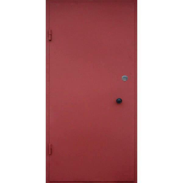 metallicheskaya-dver-28-zerkalo